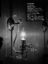 画像1: LEVITON社製真鍮ソケット付きコロニアルフォーリッジスクロールミニブラケットランプA/アメリカンヴィクトリアン壁掛照明ウォールランプ